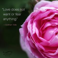 """Love does not want or fear anything."" - Eckhart Tolle ‪#‎PresentMomentReminder‬"