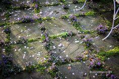 El Blog de La Tabla: Jardines muy privados. Rosanna Castrini: il mio giardino-atelier