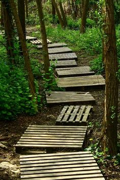 This would be awesome for a kid's wooded adventure, but wouldn't snakes live in these?