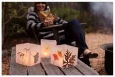 Wax Paper Luminaries - arrange flowers or leaves between 2 sheets of wax paper, cover with pressing cloth/old dish towel, iron on both sides to seal; cut and assemble with washi tape; place over tea lites in glass holders or battery-operated lights. Enjoy. Make bookmarks the same way.