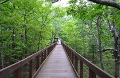 Alabama's Highest Point: Cheaha State Park wheelchair and stroller accessible!