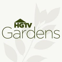 DIY Backyard Makeover on a Budget with Help from HGTVGardens!