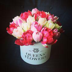 Queen Anastasia by Queens' Flowers, Riga