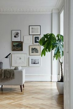 Extensive range of parquet flooring in Edinburgh, Glasgow, London. Parquet flooring delivery within the mainland UK and Worldwide. Living Room Art, Home And Living, Living Room Designs, Clean Living, Light Grey Walls, White Light, Bedroom Green, Master Bedroom, Parquet Flooring