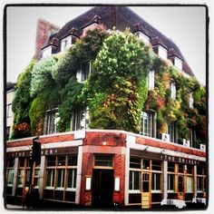 The Driver Pub vertical garden in Kings Cross Living Wall Planter, Beautiful World, Beautiful Things, Go Green, Dream Vacations, The Great Outdoors, Outdoor Gardens, Pond, Greenery