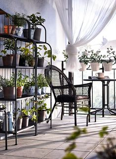 A small balcony with grey shelving units filled with green plants, a round table and a plastic rattan armchair IKEA Ikea Outdoor, Small Outdoor Spaces, Outdoor Living, Outdoor Ideas, Indoor Outdoor, Porch And Balcony, Balcony Plants, Outdoor Balcony, Balcony Gardening