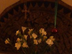 Bloemen van het Drugspastoraat voor mij. :-)