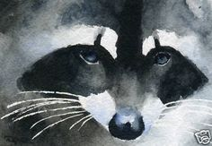 Raccoon Giclee 5 x 7 Art Print on w C Paper Signed by Artist DJR | eBay