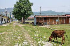A spasso per il quartiere tibetano, cosa fare a Pokhara #Nepal #nepalroutes