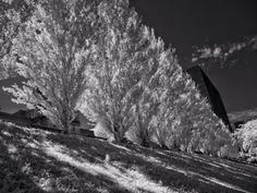 #oldmontreal #monochrome #outdoor #montreal #jfdupuis