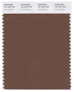 Pantone Cocoa Brown                                          Energy