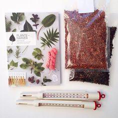 Bog om plantefarvning #sofiemeedom #vingefang #forlagetvingefang