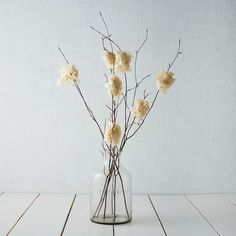 Branches with dried Hydrangea