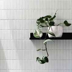 We're a Design Concept Store curating your Scandinavian, Japanese & minimalist design finds from all over the globe. Shop art, furniture and home décor online. Bathroom Interior Design, Decor Interior Design, Interior Styling, Kitchen Splashback Tiles, Backsplash, Saunas, Japanese Minimalist, Bathroom Feature Wall, Feature Walls