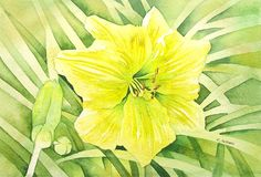 Yellow Flower Original Painting of a Daylily by on Etsy Watercolor Flowers, Watercolor Paper, Watercolor Paintings, Original Paintings, Garden Images, Day Lilies, Fine Art Gallery, Yellow Flowers, Flower Art
