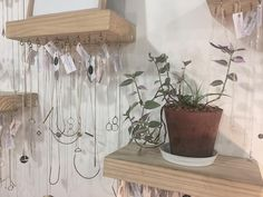 For our love of plants and all Shiny things! We have a beautiful selection of Meraki Jewellery available in store ;)