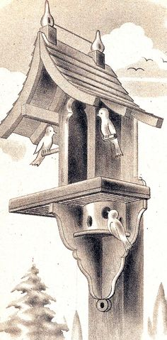 Woodworking Craft Plan Pattern Bird House Birdhouse Backyard Feeding Station