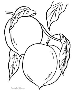 Peaches coloring picture to print and color