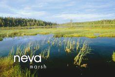Finnish words Learn Finnish, Finnish Words, Finnish Language, Language Study, Bucket List Destinations, Homeland, Vocabulary, Fun Facts, Beautiful Pictures