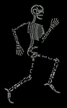 Great way to remember the bones! :)