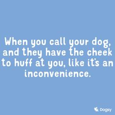 Well.. I say... You Call, Your Dog, Fans, Sayings, Lyrics, Followers, Quotations, Idioms, Qoutes