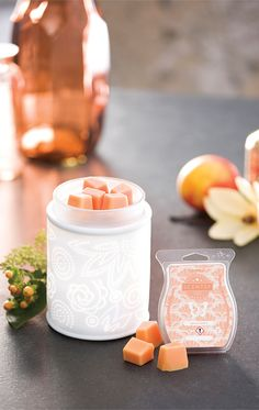 Team our Pinhole Paisley Warmer with our Apricot Vanilla Scentsy Bar - Heirloom peach, apricot and vanilla ice cream tempt fate (and everyone else). Scentsy Australia, Santa Mailbox, Scented Wax Warmer, Home Decor Uk, Wax Warmers, Vanilla Ice Cream, Scented Candles, Paisley, Scentsy Bar