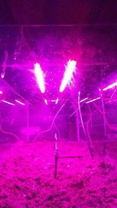 Arduino hydroponics