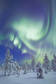 for the love of aurora borealis, the northern lights (revontulet) Beautiful Sky, Beautiful Landscapes, Beautiful World, Beautiful Places, Beautiful Pictures, Mother Earth, Mother Nature, Hirsch Illustration, Winter Wonder