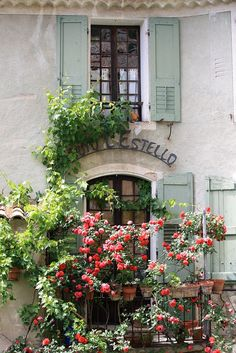 Lovely Red Roses in Moustiers Sainte-Marie Provence, France