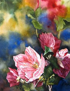 Buy Autumn Abutilon ( flowering maple), Watercolor by Alfred Ng on Artfinder. Discover thousands of other original paintings, prints, sculptures and photography from independent artists. Dream Painting, Silk Painting, Watercolour Painting, Watercolors, Watercolor Pictures, Watercolor And Ink, Watercolor Flowers, Painting Flowers, Funny Art