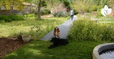 pathway, pocket prairie, backyard boardwalk, native plant design