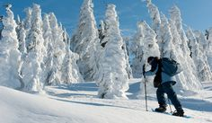 #Snowshoing in #Transylvania