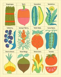 John Alcorn Vegetables — The Peculiar Manicule - Modern Design Art And Illustration, Food Illustrations, Botanical Illustration, Ligne Claire, Hippie Art, No Photoshop, Art Graphique, Grafik Design, Garden Art