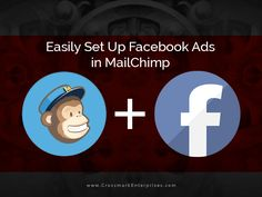 Run Facebook Ads Through MailChimp