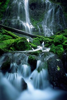 Proxy Falls, Oregon.I want to go see this place one day.Please check out my website thanks. www.photopix.co.nz
