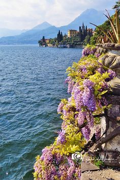 Comer See, Nature View, Lake Como, Traveling By Yourself, Destination Wedding, Europe, Italy, River, Places