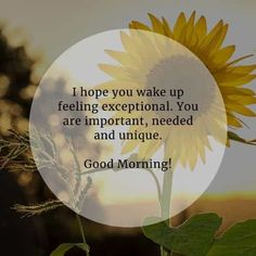 150 Beautiful good morning inspirational quotes and sayings