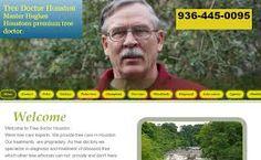 Tree doctor Houston , Houston's premier Tree Doctor.For more info visit http://www.tree-doctor-houston.com/