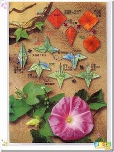 Origami Flowers with leaves-Diagram Paper Origami Flowers, Origami Leaves, Gato Origami, Origami 3d, Crafts To Make, Arts And Crafts, Paper Crafts, Diy Crafts, Origami Instructions