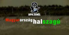 Apa Zenél: Magyarország halszagú