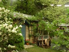 第12回 国際バラとガーデニングショウ | 深紅の庭園