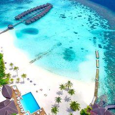 Maafushivaru Island Resort, Maldives ⠀ ⠀ ⠀ Photography via @maafushivaru_mv