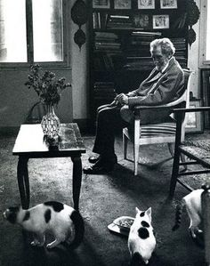 Ezra Pound with his three cats (also tried for high treason after the war). Tame Cat by Ezra Pound. Crazy Cat Lady, Crazy Cats, I Love Cats, Cool Cats, Celebrities With Cats, Men With Cats, Animal Gato, Son Chat, Gatos Cats