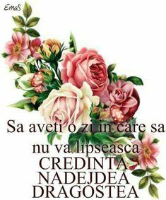 Jesus Loves You, God Jesus, Love You, Rose, Flowers, Plants, Love, Te Amo, Pink