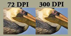 print quality 300 dpi vs 600 dpi - Google-søk