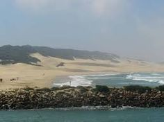 Image result for pictures of port alfred south africa I Am An African, Places Of Interest, South Africa, Places To Visit, Creatures, Water, Pictures, Outdoor, Image
