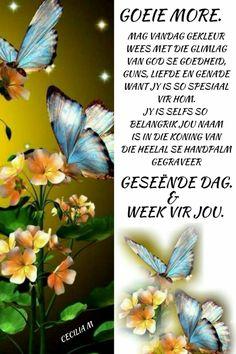 Morning Wish, Good Morning Quotes, Lekker Dag, Evening Greetings, Afrikaanse Quotes, Goeie Nag, Goeie More, Qoutes, Night