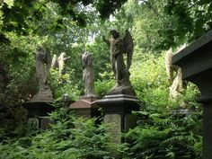 Multiple stone angels, Abney Park Cemetery (London, UK) x Cemetery Angels, Cemetery Art, Cemetery Statues, Gardens Of Stone, Gothic Angel, The Magnificent Seven, Cemetery Headstones, Garden Angels, Angel Statues