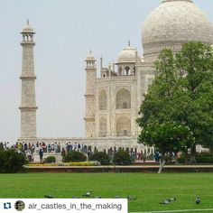 #Repost @air_castles_in_the_making with @repostapp Get featured by tagging your post with #Talestreet | Peace Love and Pigeons |  #oldpic #traveldiaries #agra #tajmahal #incredibleindia #wondersoftheworld #mesmerizing #scenic #beautiful #dailygram #travelbug #talestreet #twitter #traveling #travelgram #travelindia #explore #explorer #wanderlust #wanderer #wander @indiatravelgram