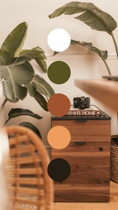 Colour Pallette, Colour Schemes, Earthy Color Palette, Interior Color Schemes, Rustic Color Palettes, Vintage Colour Palette, Orange Color Palettes, Earthy Colours, Jewel Tone Colors